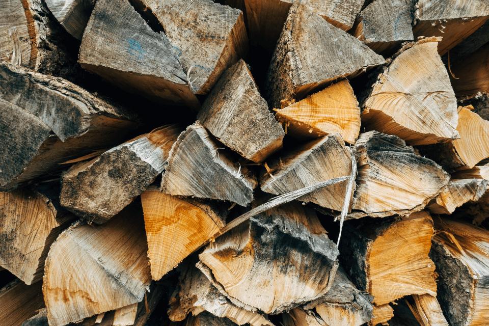 energias-biomasa-especialidad-biomasa
